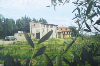 Nella nostra fattoria a due passi da Montepulciano, percorsi didattici per ragazzi e adulti consentono di gustare per qualche ora la vera vita di campagna e osservare i luoghi in cui nascono i vitigni del Nobile di Montepulciano.