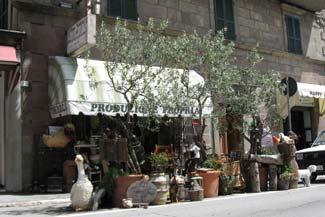 Il negozio di via Cavour è il punto vendita dei nostri prodotti: vino, olio, salumi, formaggi. Qui troverete anche molte delicatezze gastronomiche della zona amiatina e centinaia di oggetti per regali meravigliosi.
