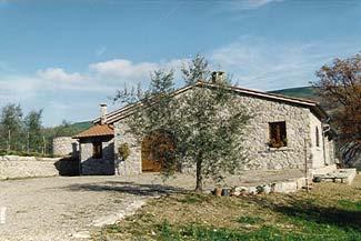 frantoio1